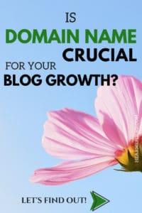 Is domain name crucial for blogging #bloggingtipsforbeginners #howtostartablog