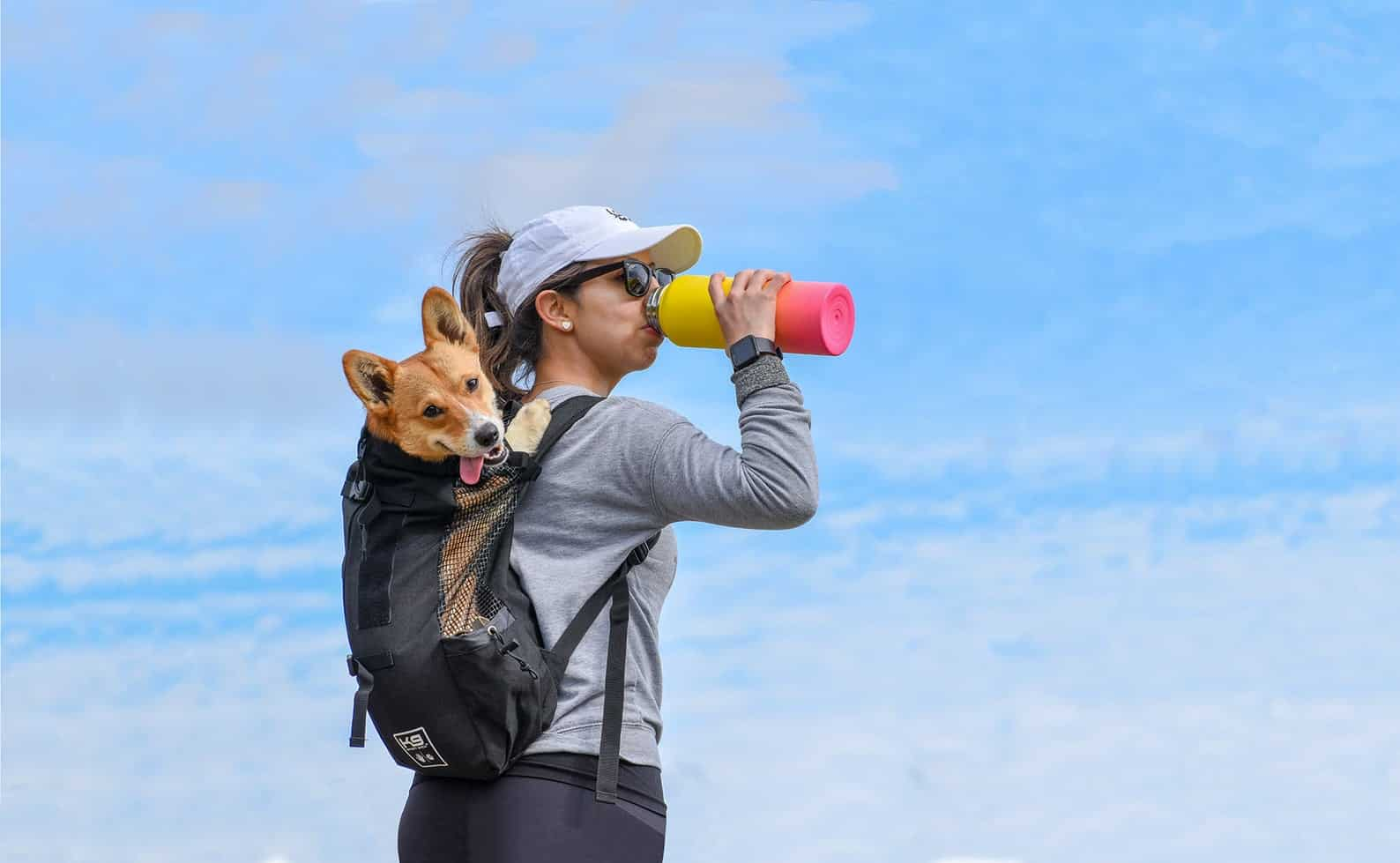 luxury dog accessories - dog backpack carrier